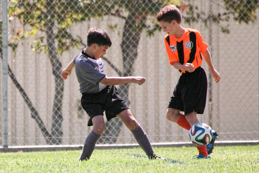 2015 Boys U12 Soccer