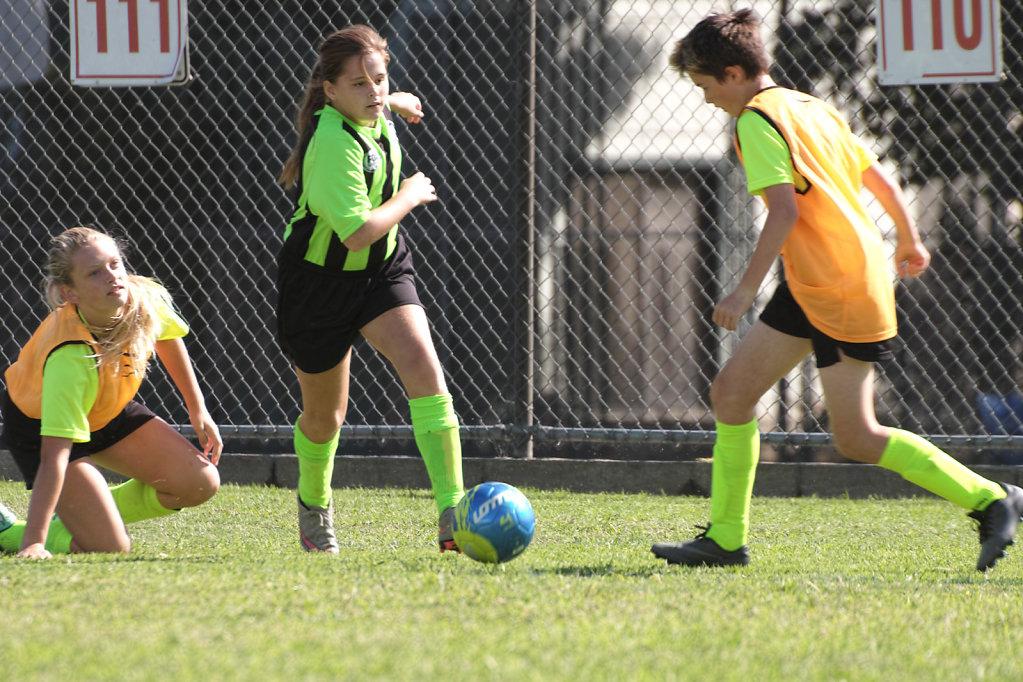2016 Girls U12 Soccer - Fall